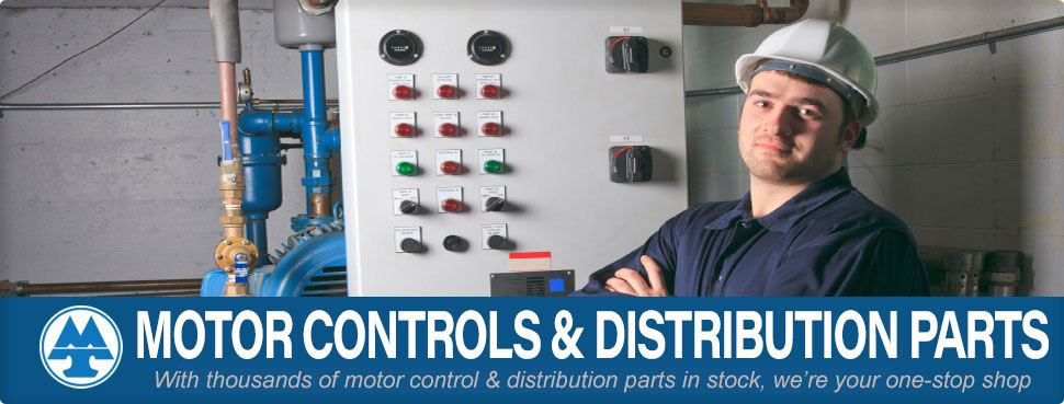 Plant manager standing in front of a motor control panel